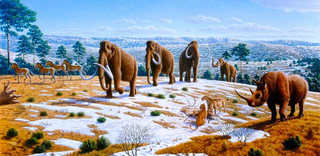 mamíferos del pleistoceno en españa