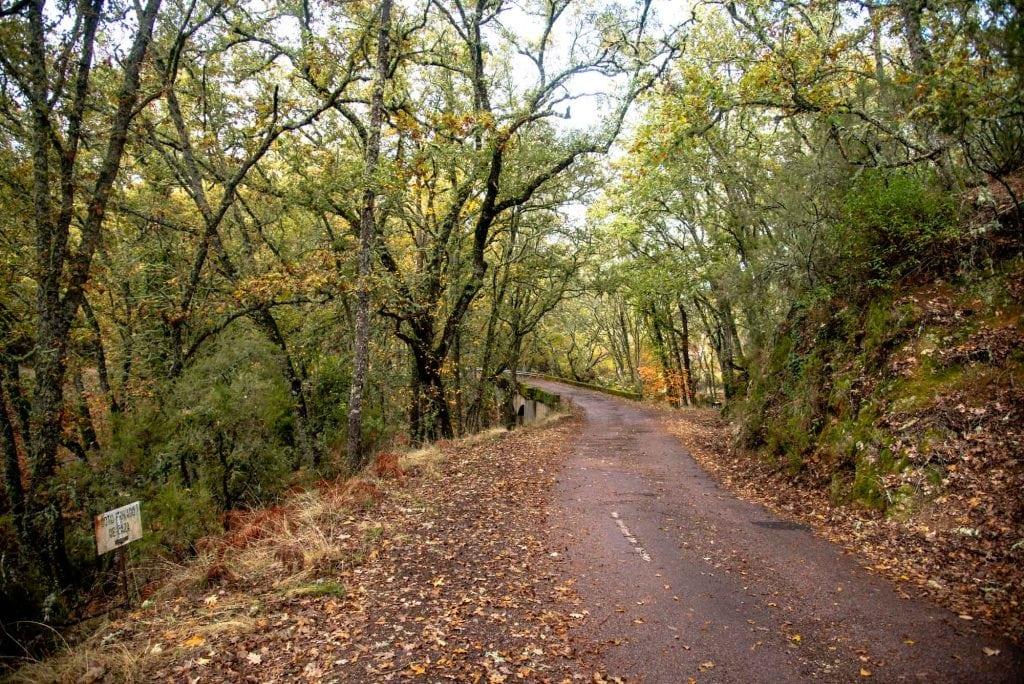 Gargantilla carretera rebollar