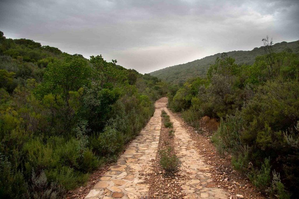 Sendero del valle de la Viñuela