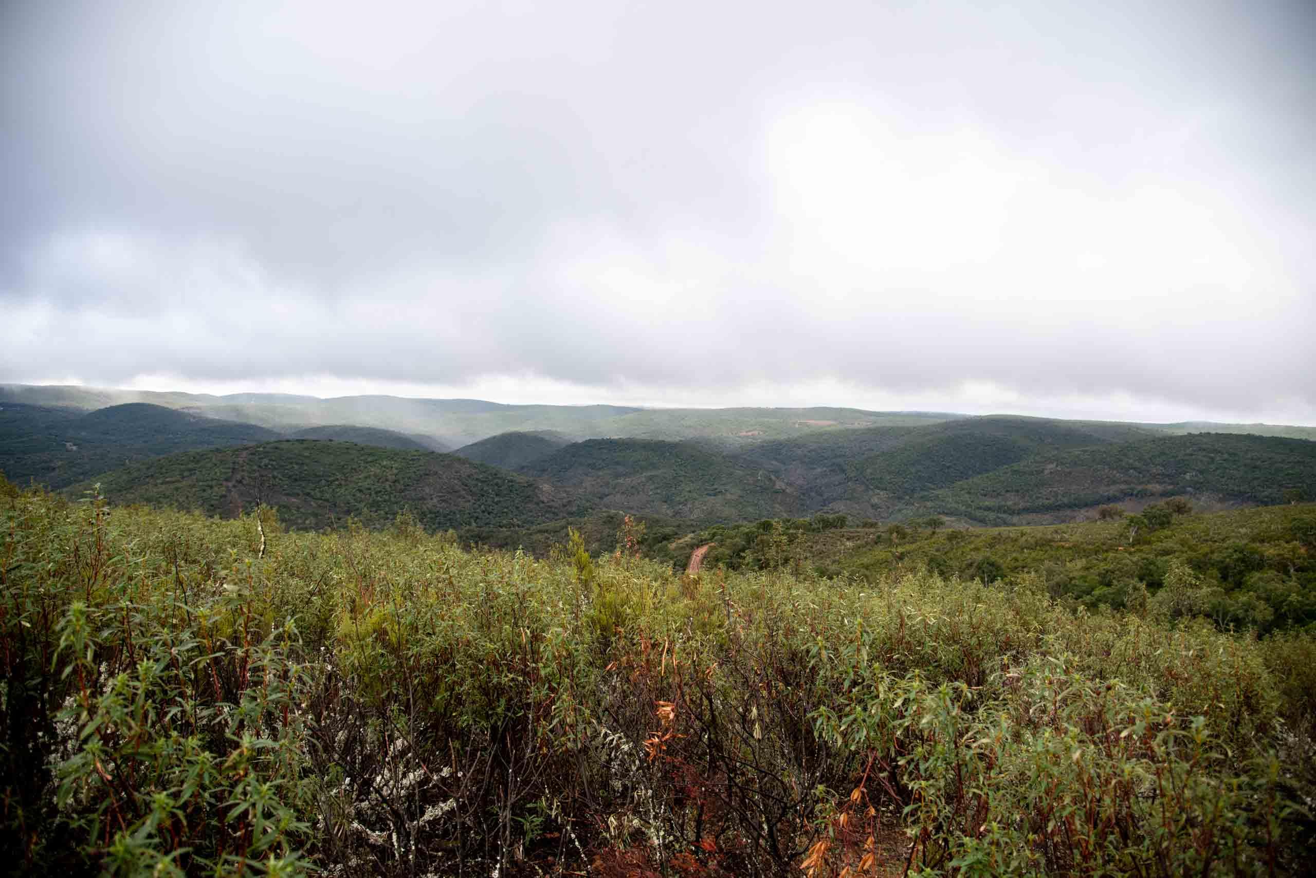 ruta de Gargantilla