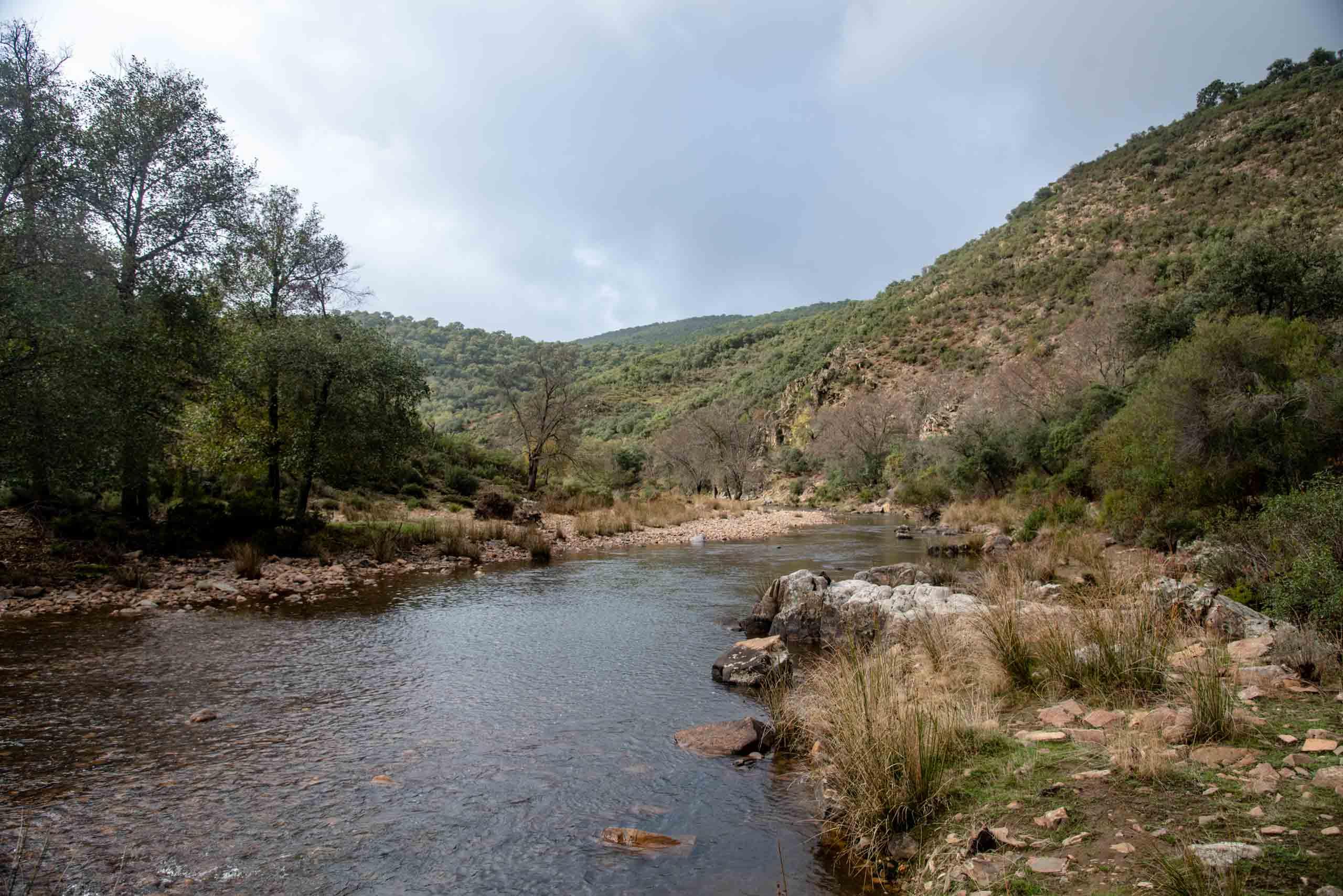 Río Estena en ruta de Gargantilla