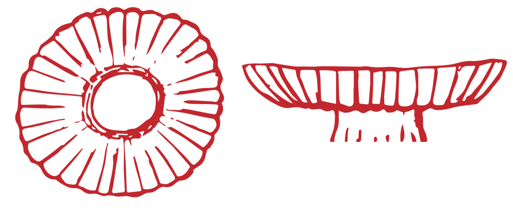 Ilustración de antigua anémona marina