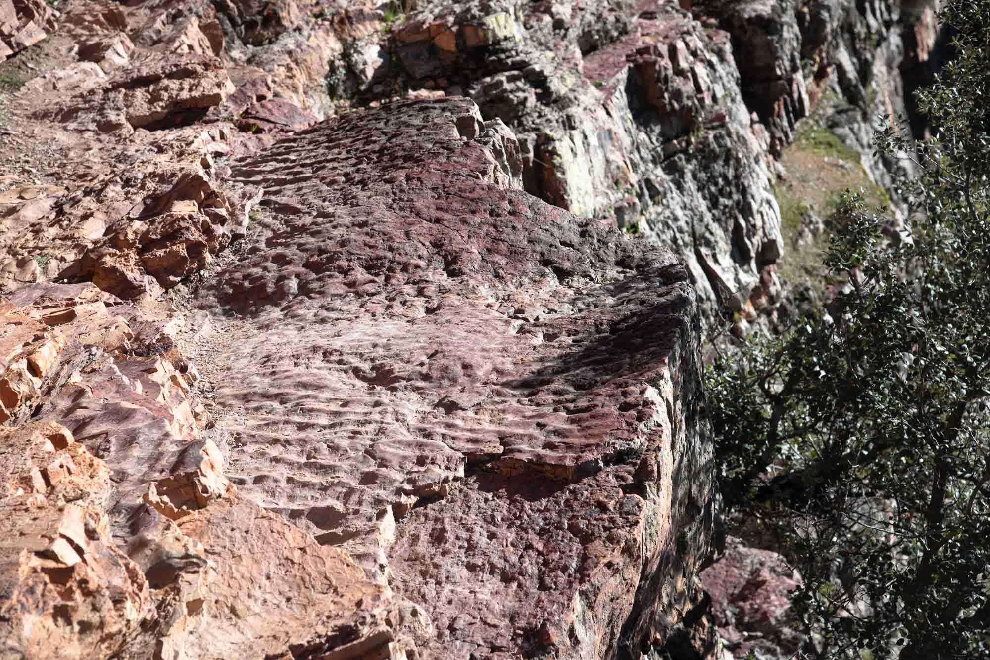 Rizaduras ripple marks nacalucillos