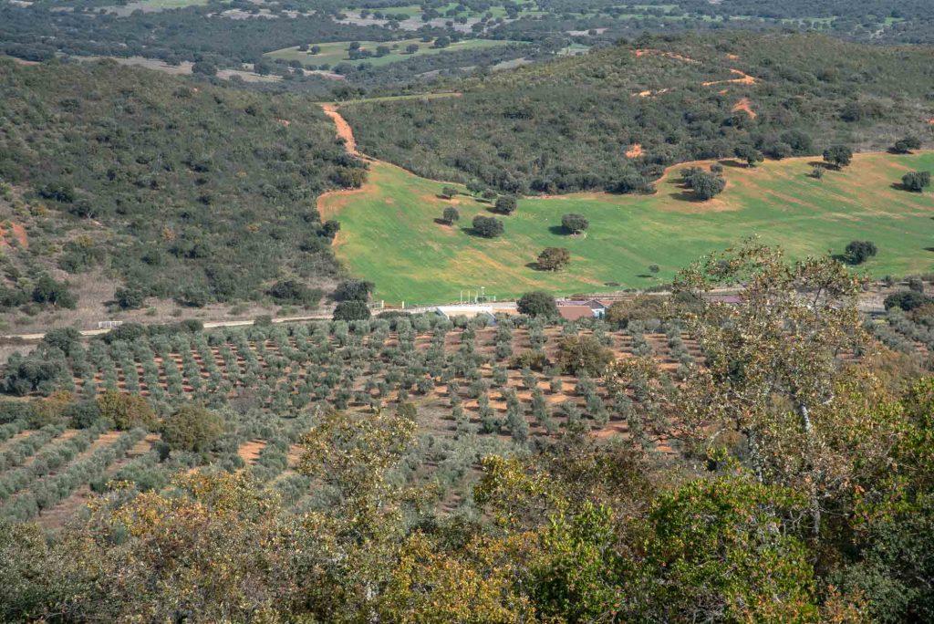 Vista plaza de los moros